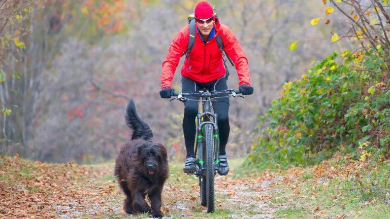 Zusammenstoß mit Fahrrad